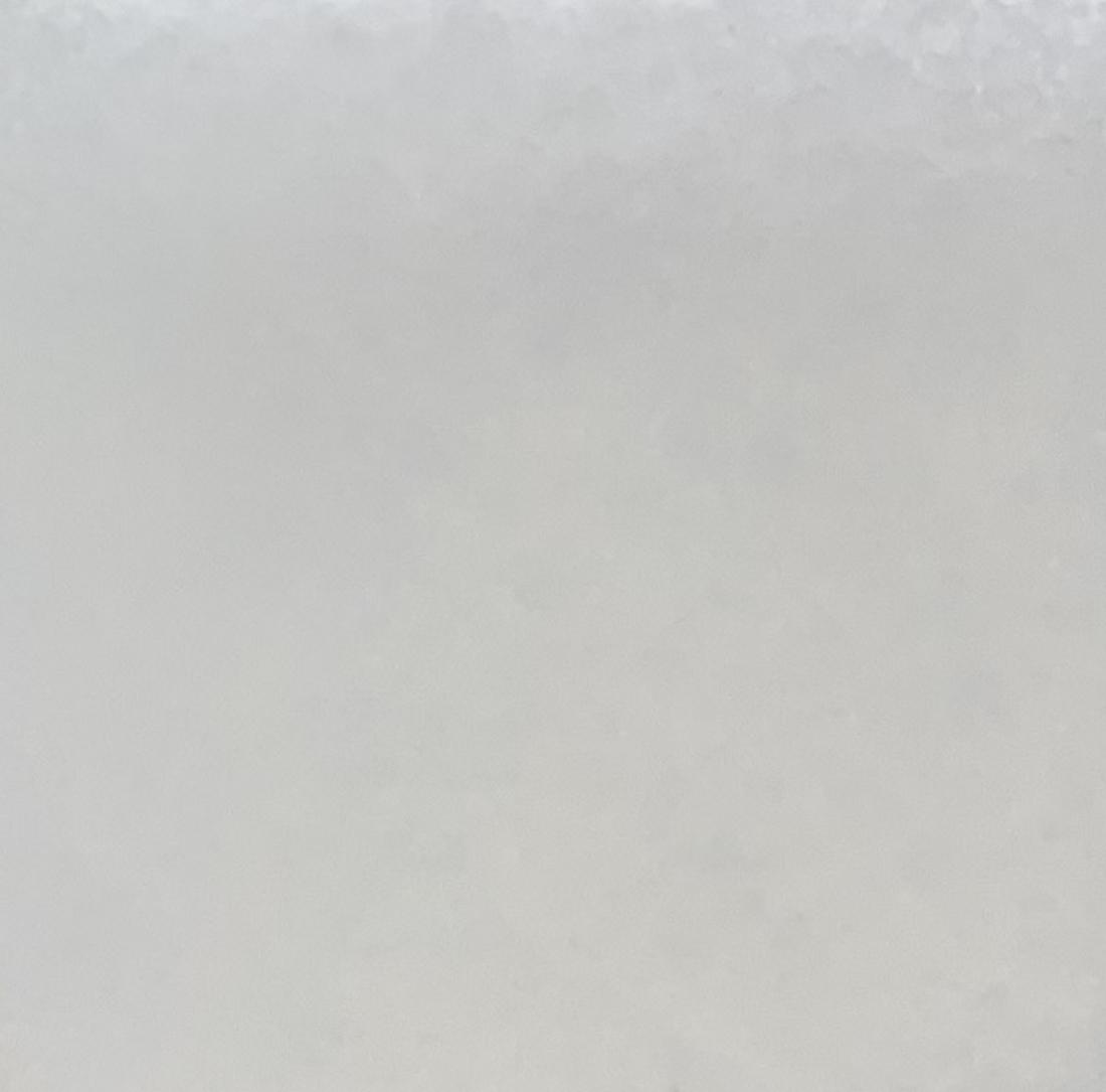 Όνυχας Λευκός